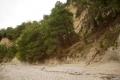 Пицундские сосны, «штурмующие» крутые склоны Мюссеры