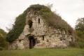 Развалины раннехрестианского храма, поросшие Плющом колхидским